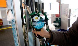 Estai planuoja į bioetanolio gamyklą Lietuvoje investuoti 180 mln. Eur