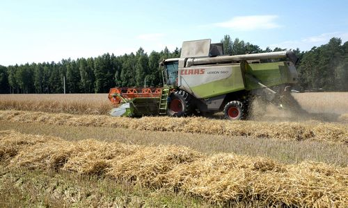 Žemės ūkio bendrovės praėjusių metų vargus dalijosi ne po lygiai