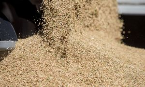 """""""Scandagra"""" pernai pasiekė rekordinę 177 mln. Eur apyvartą"""