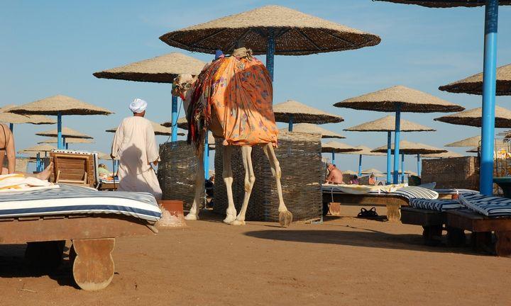 Egipto kurortuose plinta plastiko draudimų banga