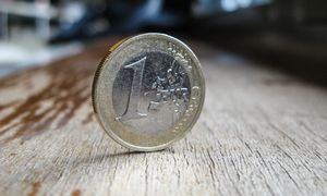 Vertingas profesinių mokyklų turtas įvertintas 1 Eur