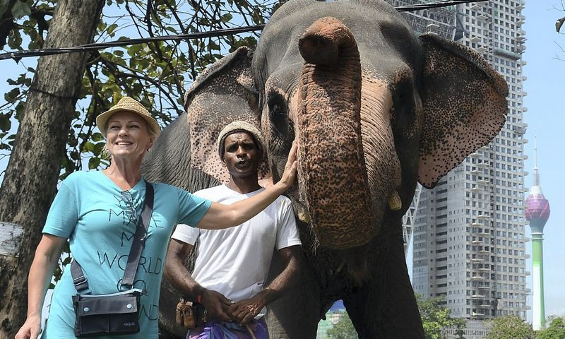 Turistė fotografuojasi su drambliu. Šri Lanka.  Lakruwan Wanniarachchi (AFP/Scanpix) nuotr.
