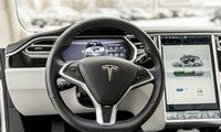 """""""Tesla"""" vagystės tikimybė – 90% mažesnė už vidutinę"""