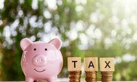 Pagal surenkamą pelno mokestį Lietuva paskutinė tarp ES šalių