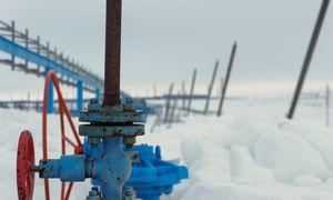 Prie dugno prislėgtos dujos žiemai parduodamos trečdaliu pigiau