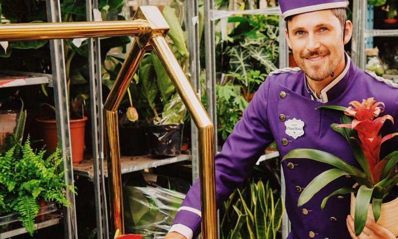 """""""Patch Plant Hotel"""" misija – išgelbėti ne tik jūsų augalus, bet ir santykius su artimaisiais. Bendrovės nuotr."""