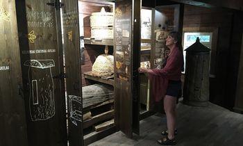 Per Žolinę kviečia į atsinaujinusį Bitininkystės muziejų