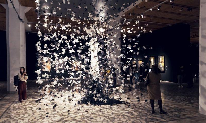 """Iš parodos """"Orų dienoraščiai"""" Taikomosios dailės ir dizaino muziejuje. Tomo Kapočiaus/LDM nuotrauka."""