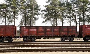 Grūdininkams šiemet vagonų turėtų užtekti