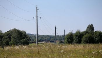 Elektros rinką ketina liberalizuoti palaipsniui