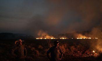 Brazilija siunčia kariuomenę degantiems Amazonijos miškams gesinti