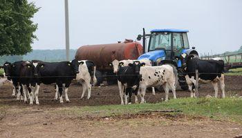 Pienininkų rezultatai: Rokiškyje, Vilkyškiuose – nuostolis, Telšiuose – augantis pelnas