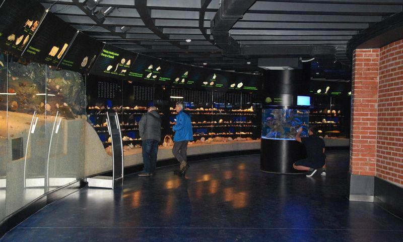 Po 15 mln. Eur kainavusios rekonstrukcijos 2017 m. pabaigoje buvo atidarytas Lietuvos jūrų muziejaus akvariumas. Mildos Ancevičės (VŽ) nuotr.