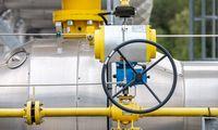 VPT stabdo beveik 100 mln. Eur vertės dujotiekio į Lenkiją statybos konkursą