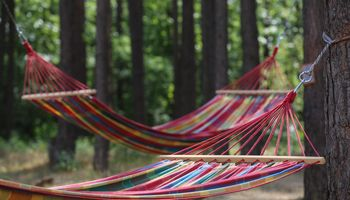 Medijoms skiriame daugiau laiko nei miegui