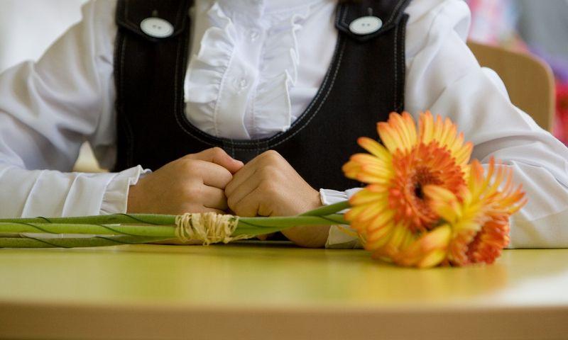 Kamilė neprisiminė savo pirmojo rugsėjo mokykloje. Juditos Grigelytės (VŽ) nuotr.