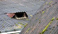 Aplinkos ministerija asbesto atliekoms šalinti skyrė dar 280.000 Eur