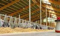 Kredito unijos finansuoja drąsiausias Lietuvos ūkininkų idėjas