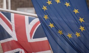 """JK užfiksuotas pirmasis psichozės dėl """"Brexit"""" atvejis"""