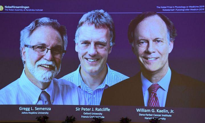 Nobelio medicinos premija padalinta trims mokslininkams