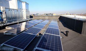 """""""Ignitis saulės parkai"""" piktinainvesticijų valdytojus, bet LBįmonę užstoja"""