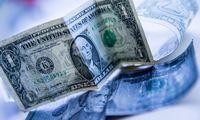 Investuotojai plūsta į pinigų rinkos fondus