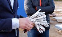 Jaunų rankų paradoksas statybose: daug besimokančių, o mažai dirbančių