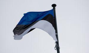 Estijoje daugėja įspėjimų apie grėsmes ekonomikai