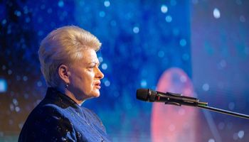 D. Grybauskaitė: Seime vyrauja chaosas