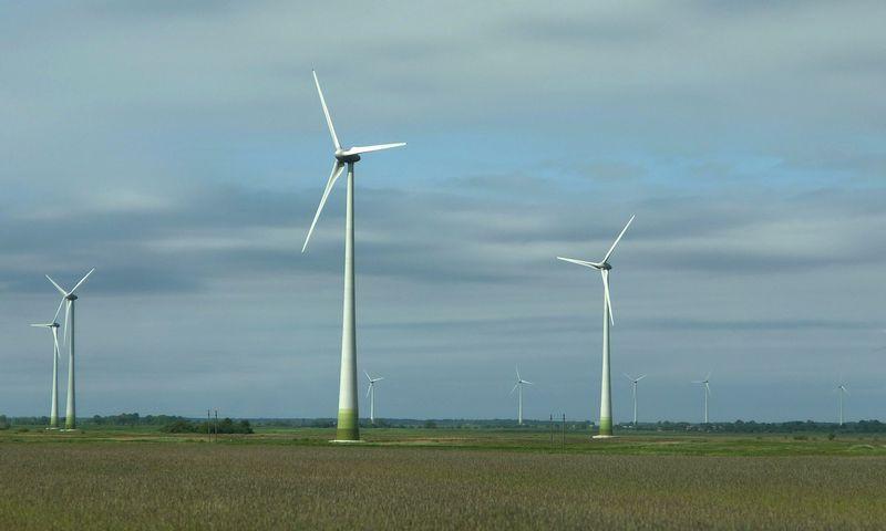 Vėjo jėgainių parkas Klaipėdos rajone. Algimanto Kalvaičio nuotr.