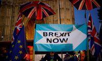 """ES sutinka, kad """"Brexit"""" reikia atidėti, tačiau kiek, dar nenuspręsta"""