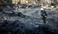 K. Mažeika: po gaisro Alytuje reikės užtikrinti, kad užteršti produktai nepatektų į rinką