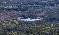 Senoji gvardija panoro į miškus sugrąžinti daugybines urėdijas