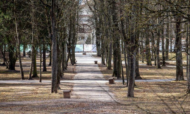 Sapiegų parkas Vilniuje, Antakalnyje. Juditos Grigelytės (VŽ) nuotr.