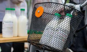 ES Teisingumo Teismas: Lietuva pieno kainas reguliuoja teisėtai
