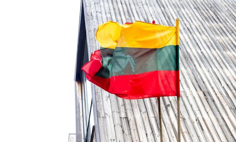 Lietuvos valstybinė ir istorinė vėliavos. Juditos Grigelytės (VŽ) nuotr.