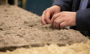 Lietuvos pramonės produkcijos vertė spalį augo