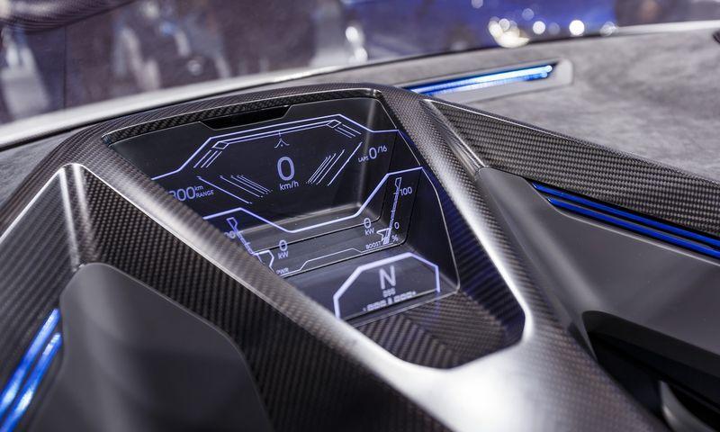 """Ilgalaikis tikslas – sukurti """"Volkswagen"""" prekės ženklo programinius produktus ir realizuoti juos pasaulinėje rinkoje. Vladimiro Ivanovo (VŽ) nuotr."""