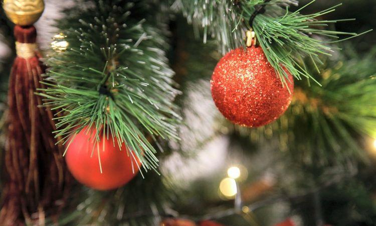 """""""Norfa"""" tęsia tradiciją: per šventes parduotuvės nedirbs"""