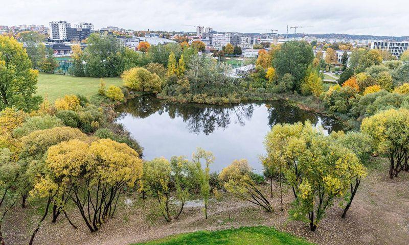Teritorija Vilniuje, kur turėtų būti įkurtas japoniškas sodas. Juditos Grigelytės (VŽ) nuotr.