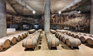 Pasaulinė vyno pramonė subrendo transformacijai