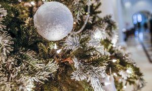 Estų bendrovė iš Helsinkio kalėdinės eglės pagamins 1.000 l toniko