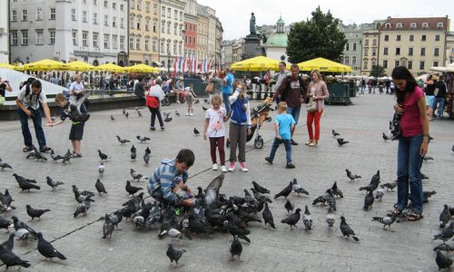 Lenkija: imigracija kaip gelbėjimo ratas