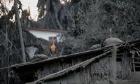 Filipinuose išsiveržęs ugnikalnis stabdo Manilos oro uosto darbą