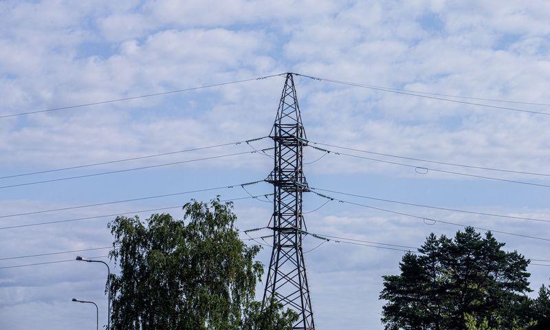 Elektros perdavimo linija. Juditos Grigelytės (VŽ) nuotr.