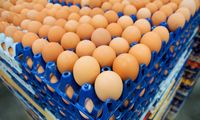 """Groward Group"" siekia įsigyti ""Baltic Egg Production"" ir ""Europe eggs"""