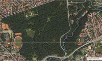Kaunas ieško, kas už 4,3 mln. Eur sutvarkytų Ąžuolyno parką