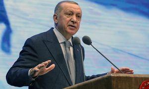 R. T. Erdoganas: žlugus Libijos vyriausybei, Europai kils teroro grėsmė