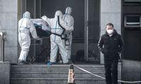 """Mokslininkai: užsikrėtusiųjų SARS giminingu virusu gali būti """"šimtai"""""""