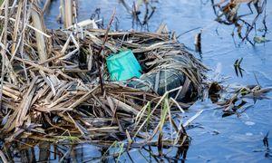 Aplinkosaugininkai Kėdainiuose veikiančią įmonę įtaria teršus bevardį upelį